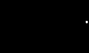 Gioielleria- Santa Lucia di Piave- Gioielleria Balzarini